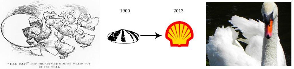 evolutie shell logo