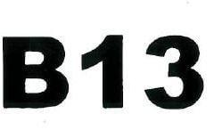 platform-label-B13